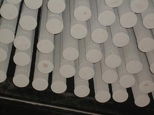 Biodiesel filters