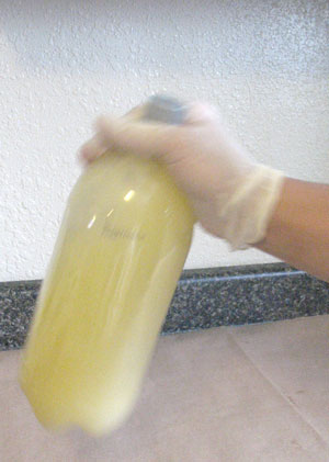 making your own biodiesel - shaking it up in the bottle